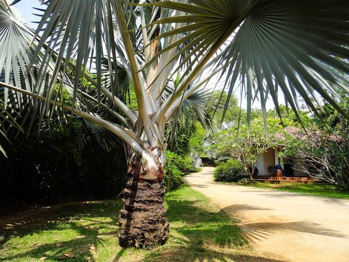 """Garden House at """"Little Tamarind"""""""