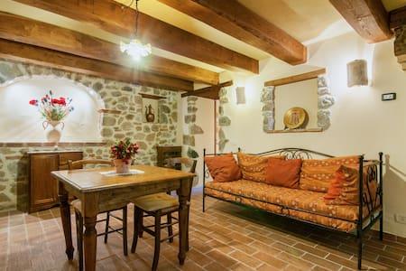 Apartment 'Granaio', pool, wifi  - Province of Arezzo