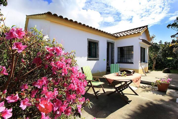 Casa de Mel - Quinta das Abelhas - Ginetes - Haus