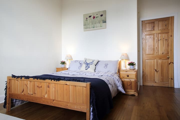 Lovely Victorian flat in Leith - Edinburgh - Flat