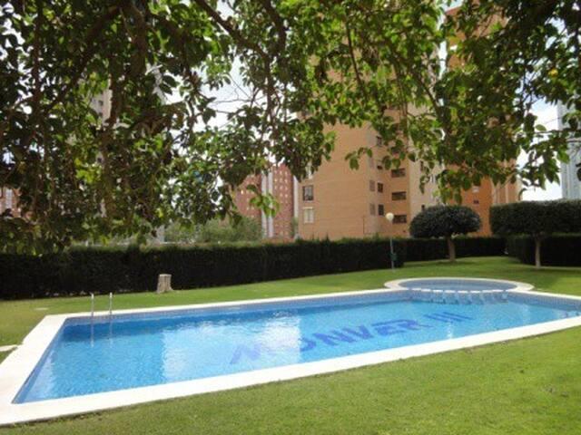 Apartamentos Platinum-Benidorm_23_Wifi und Pool