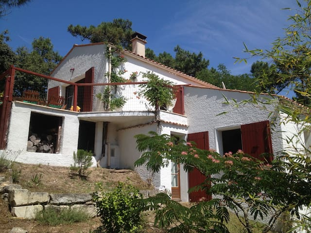 secluded villa close to beach - Saint-Georges-d'Oléron - Apartamento