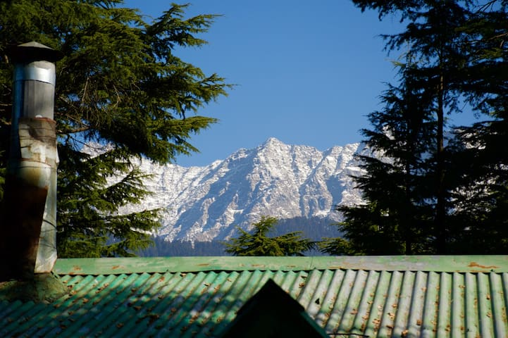 Secluded mountain cottage + breakfast, Dharamsala - Dharamshala