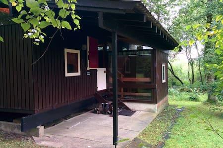 Caban Draenog: cosy woodland cabin - Cenarth