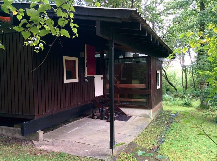 Caban Draenog: cosy woodland cabin