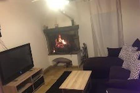 appartement 2  pieces  classe - Mouans-Sartoux - Appartement
