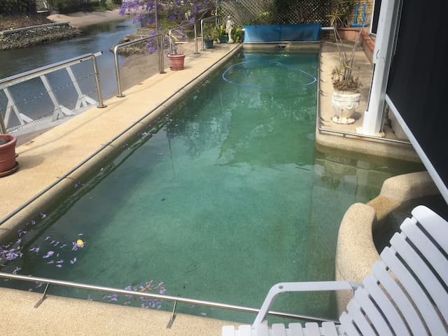 Private Room with pool access (Room # 1) - Surfers Paradise - Bed & Breakfast