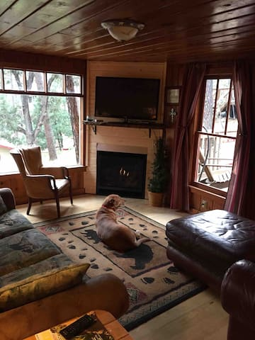 Modern gas fireplace, tv with cable and DVD player, wifi, and large bay window overlooking neighborhood and pines.