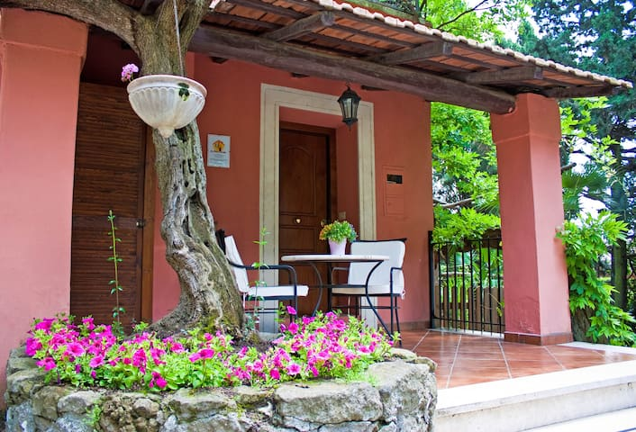 Charming Cottage hill nearby Rome - Grottaferrata