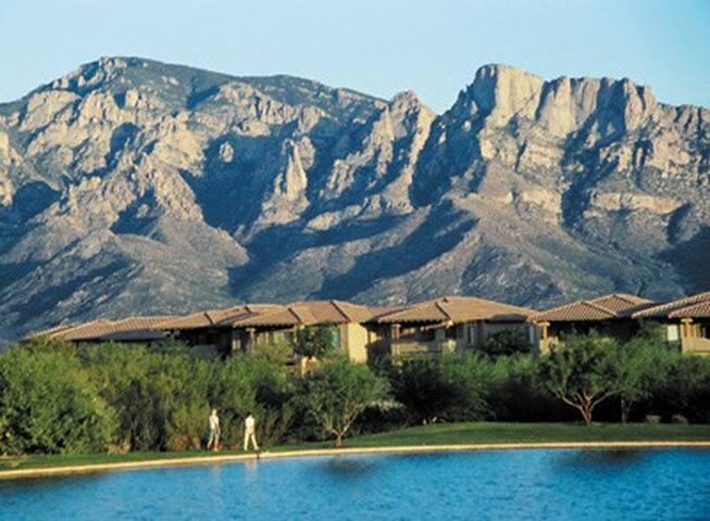 Arizona-Rancho Vistoso Resort 1 Bdrm Condo