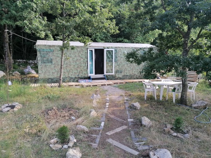 Tiny Home on Edge of Forest