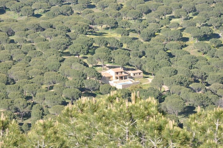 Spectacular estate close to Madrid  - Cebreros
