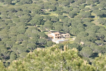 Spectacular estate close to Madrid  - Villa