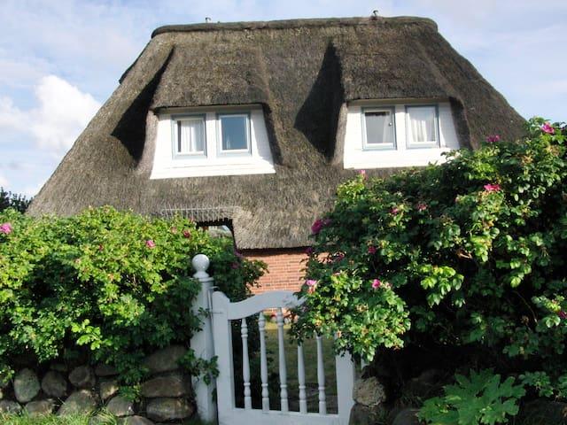 SYLT Westerheide 22 semi-d/ DHH - List - House