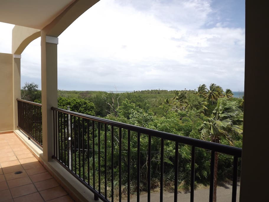 View of the Natural Reserve from our balcony