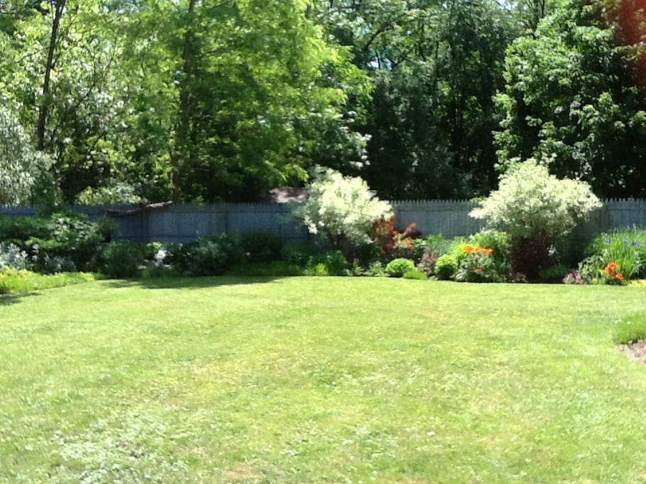 oasis garden backyard!
