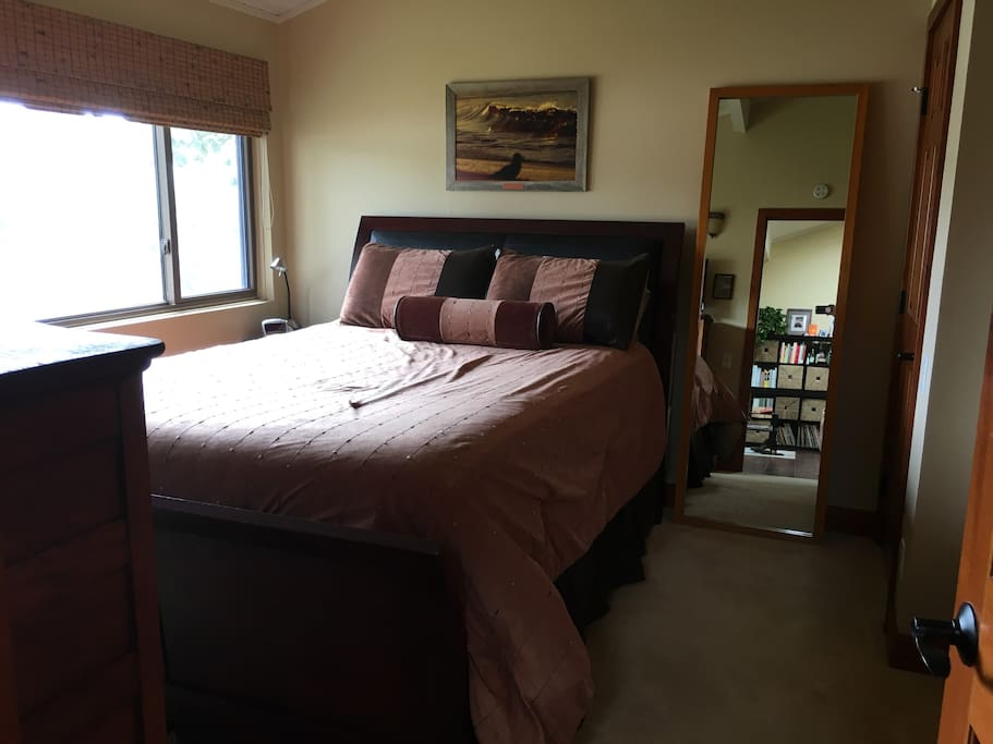 Queen bed with lots of light with privacy shades, closet space, dresser, and full length mirror