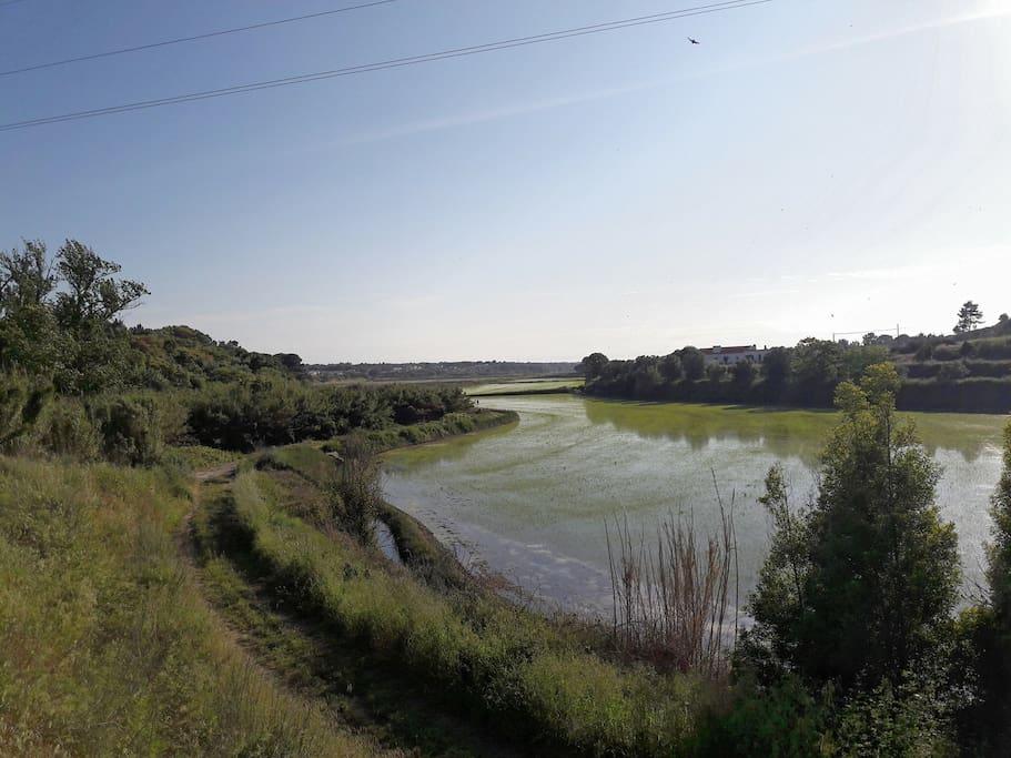Lagoa Melides