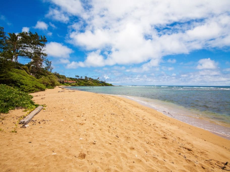 anahola dating Local experts ready to help you book the perfect vacation rental in aliomanu  down to anahola beach park which provides a  with singles bars, dancing, and .