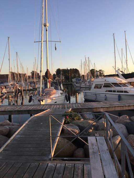 Solnedgangs bænke på havnen