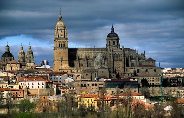 ATICO HERMOSO EN SALAMANCA ,TERRAZA - Salamanca - Lägenhet