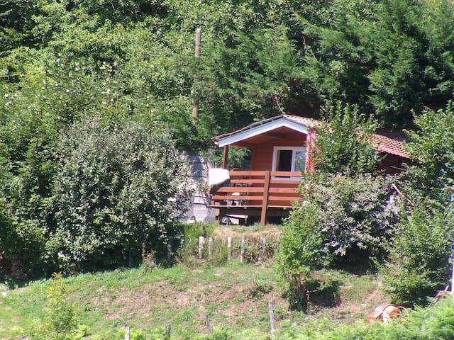 CHALET - La Salvetat-sur-Agout - Haus