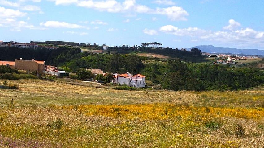 A Casa Portuguesa/ Wine Room@Mafra/Ericeira - Mafra - Bed & Breakfast