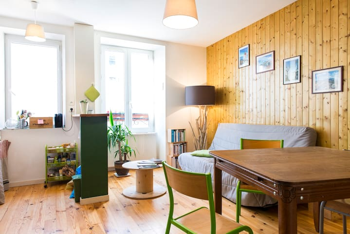 Charming apartment downtown Clisson - Clisson - Flat