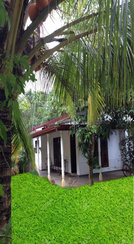 Bentota house (Roshan)