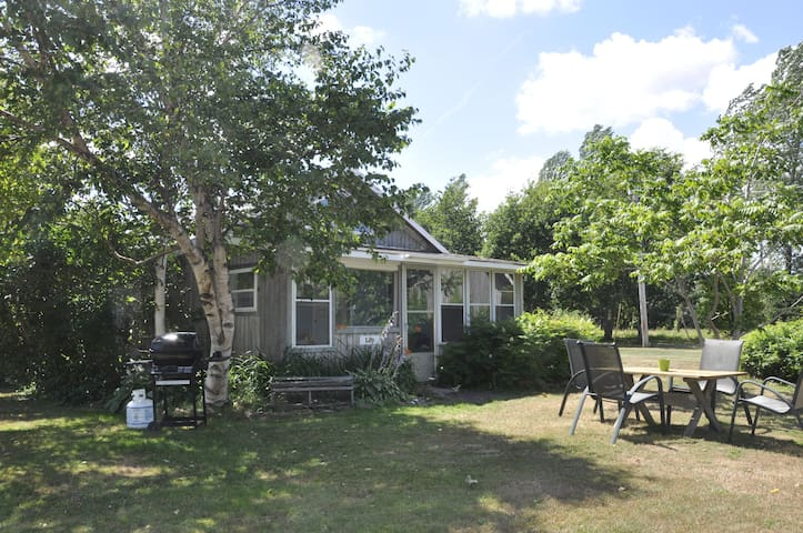 LILY (#4 Cottage): a family oriented cottage