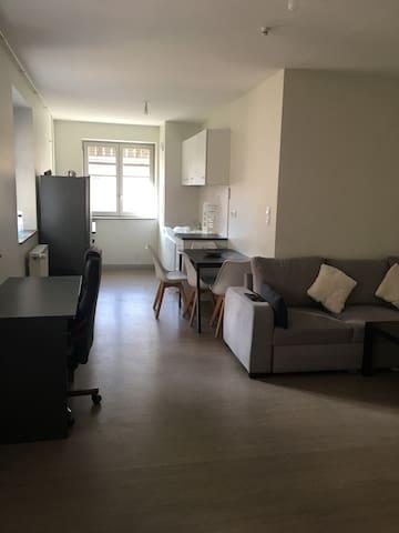 Appartement T2 emplacement idéal face à la Saône