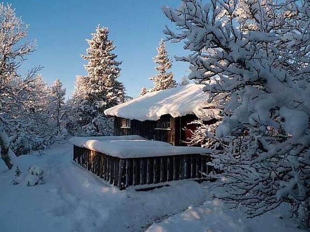 Familiehytte i flott turterreng - Sjusjøen - Cabin