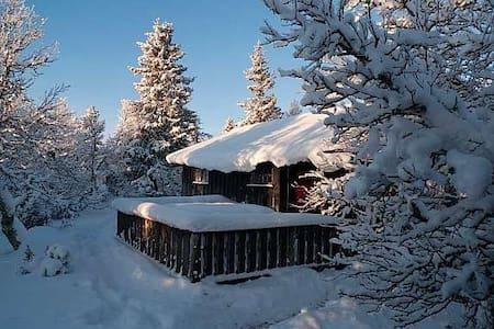 Familiehytte i flott turterreng - Sjusjøen - Cottage