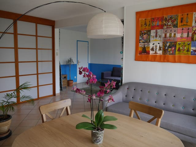 Grand appartement lumineux et calme - Ramonville-Saint-Agne - Condominium