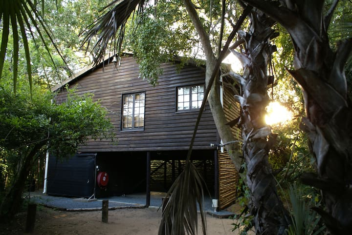 Isinkwe Bush Camp - Bush Baby Tree Cabin