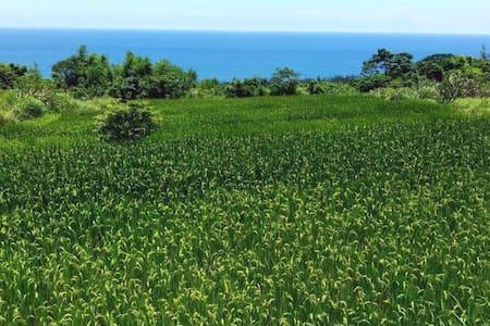 禾艾尚。長濱。 背包客   東海岸的長濱,位於金鋼山腳下,面對蔚藍色的太平洋,是個隱蔽純樸的小村落。