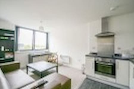 Wonderful one bedroom flat for professional people