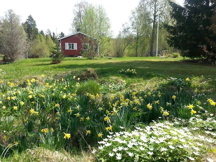 Charmig stuga i naturskönt och lugnt område