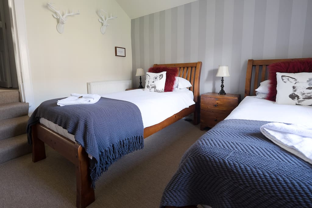 Lovely twin room private bathroom breakfast for Designer room glasgow