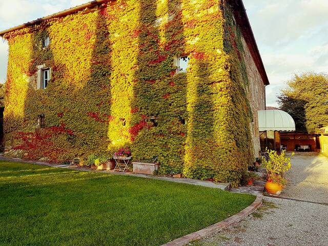 """Appartamento  """"GIOVI"""" in antico casale in Toscana"""
