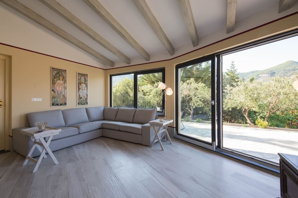 the living room with large windows
