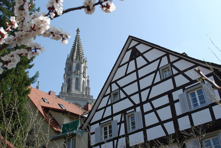 Zi. 2: Fachwerkhaus am Münsterplatz, 5 Min zum See