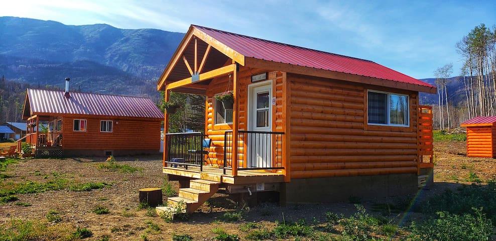 Another Cabin near Telegraph Creek on Glenora Road