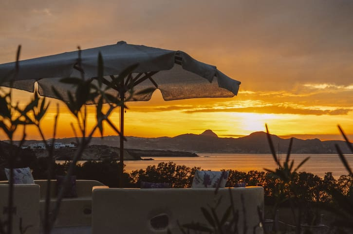 Aloni, the sunsets are marvelous from the sea-garden