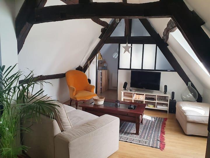 Petit Appart cosy centre historique Senlis