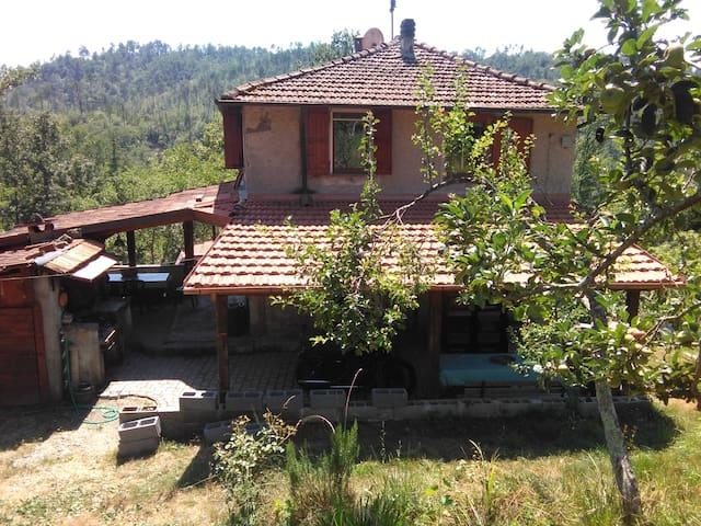 Casa nel verde vicino a 5 terre - Beverino - House