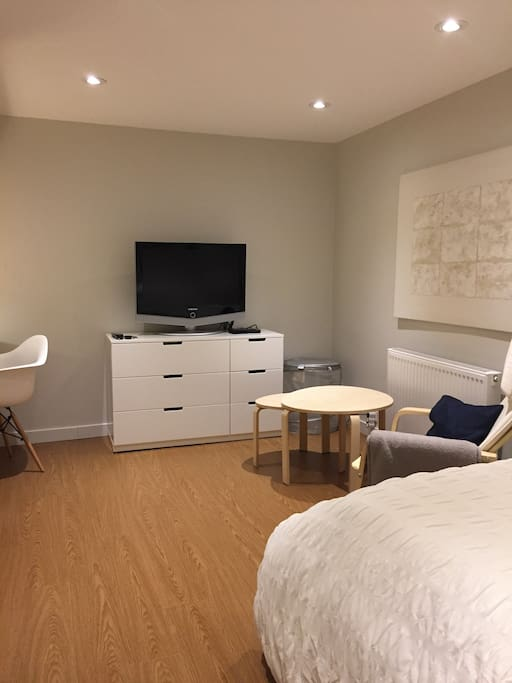 Bedroom/Lounge with TV