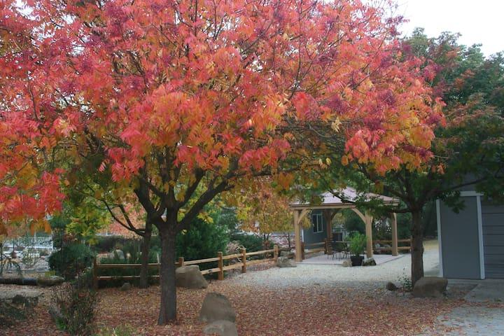 Cedar Pines-Beautiful country getaway in the trees