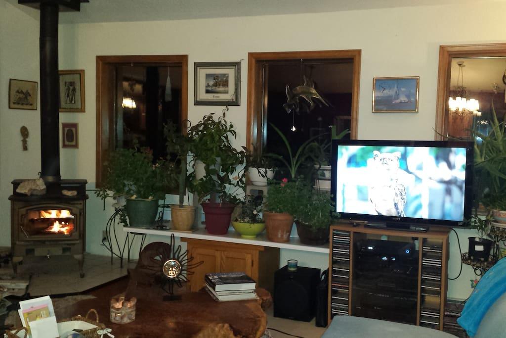 55' Sony Smart TV Wood Stove House Plants