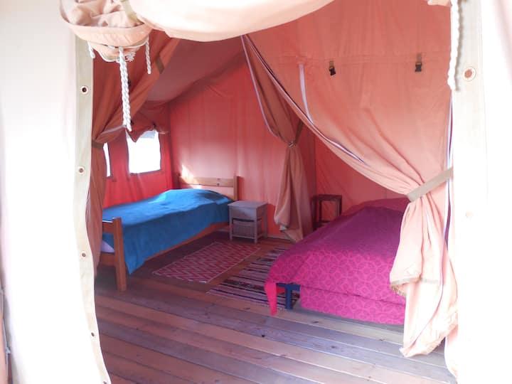 """Tente Safari 3 """"Coccinelle"""""""